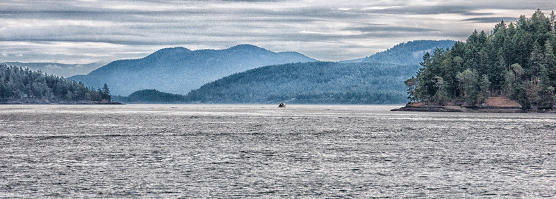 the waters around the San Juan Islands