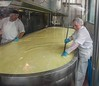 Cheese making.
