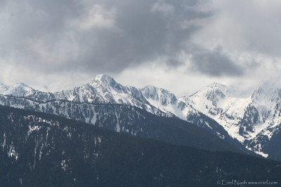 HurricaneRidge-20120505-042