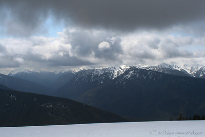 HurricaneRidge-20120505-015