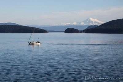 Anacortes-Orcas-Ferry-20131128-23