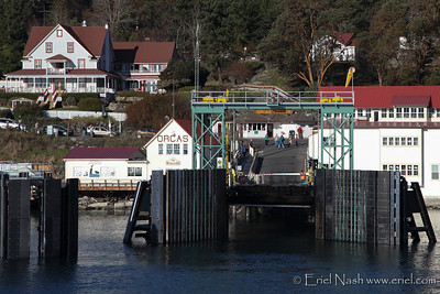 Anacortes-Orcas-Ferry-20131128-31