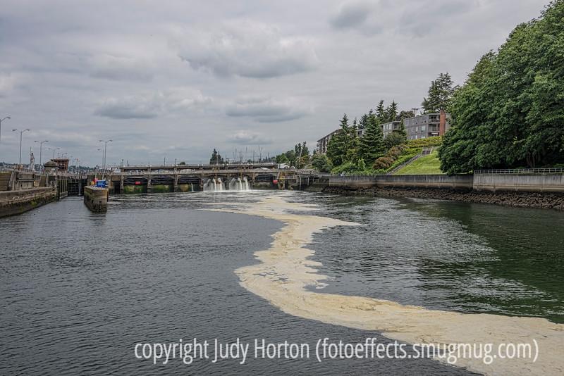 Locks to Lake Washington, Seattle