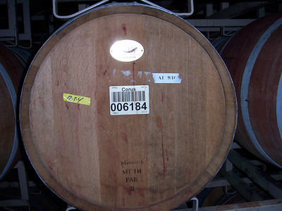 Checkin' out the wine casks.
