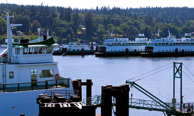 Ferry Dock  Bainbridge Island, WA