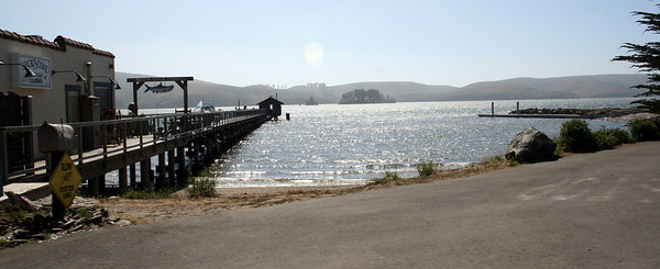 Tomales Bay, 14 Aug 2009