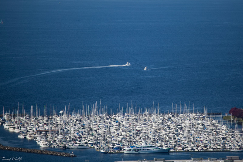 Crowded harbor, Seattle, USA
