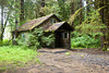 Cabin in the wood, Olympic Rain Forest
