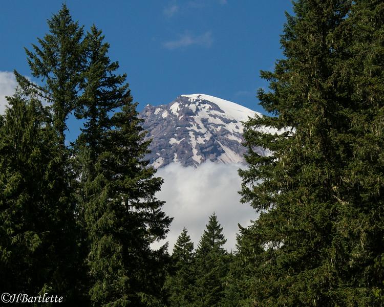Mt. Rainier summit glaciers