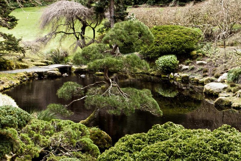 Blodel Reserve, Bainbridge Island