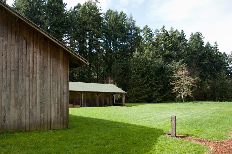 Blodel Reserve. Seattle Washington