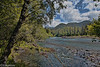 Hoh river, Olympic National Park