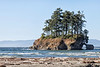 Northern Olympic Peninsula, Washington State