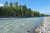 Cowlitz River, Packwood Washington