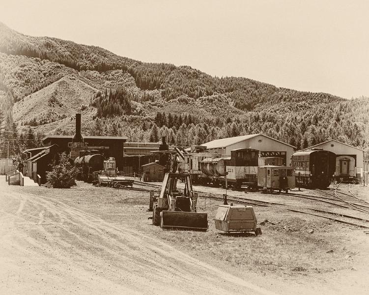 Mt. Rainier railroad logging camp. Built in the 1880s