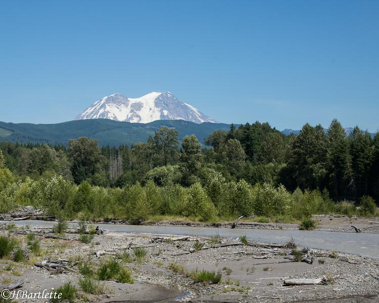 Mt. Rainier fron the Nisqually River