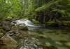 Kautz Creek, Mount Rainier