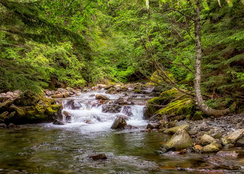 Kautz Creek, Mount Rainier