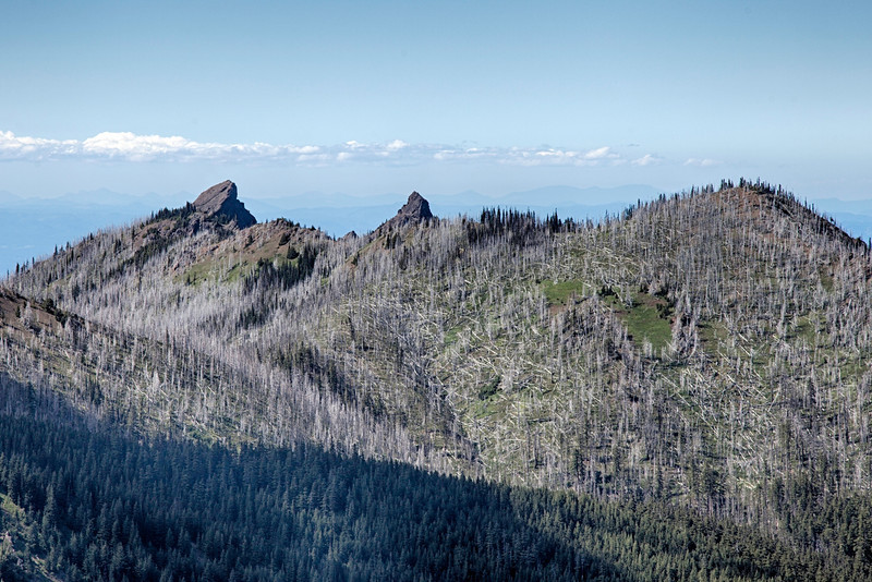 Unicorn Peak, Unicorn Horn and Griff Peak, Olympic National Park