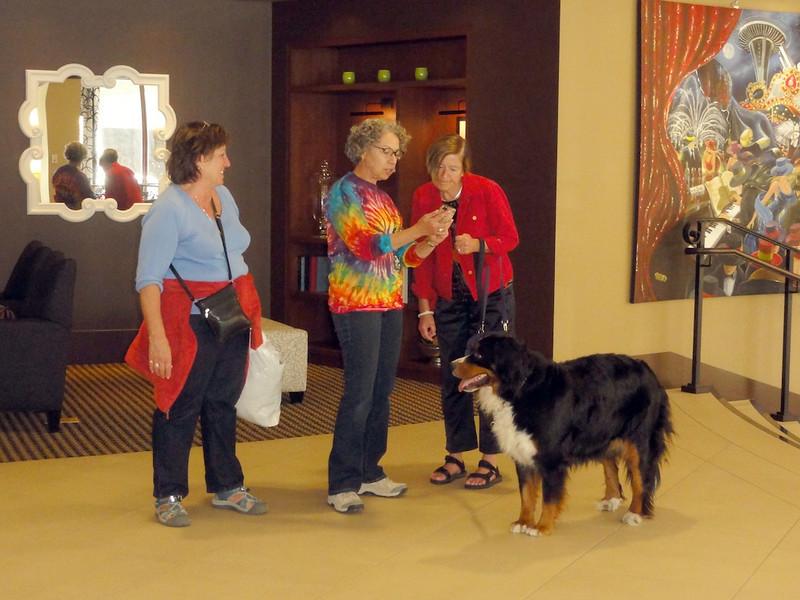 Joyce and Denyse Meet a Bernese