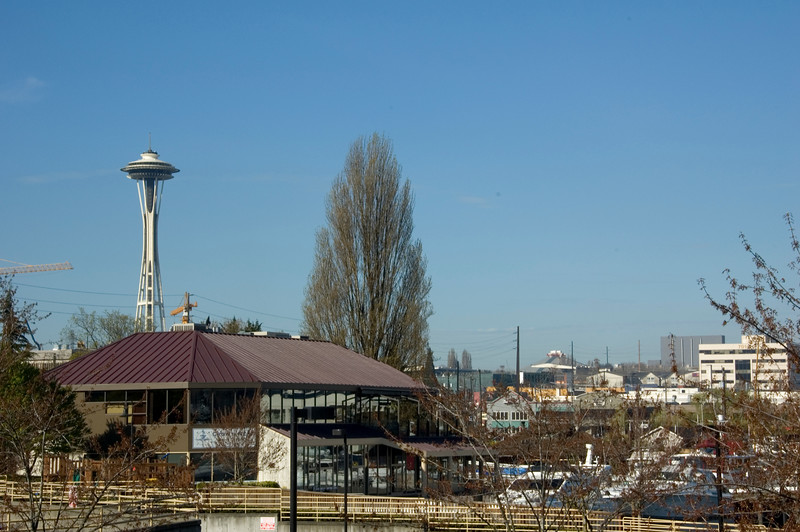 Another view of the famous Space Needle.  The weather that day was sunny and warm with highs in the mid-70's.  A perfect day for walking around town.