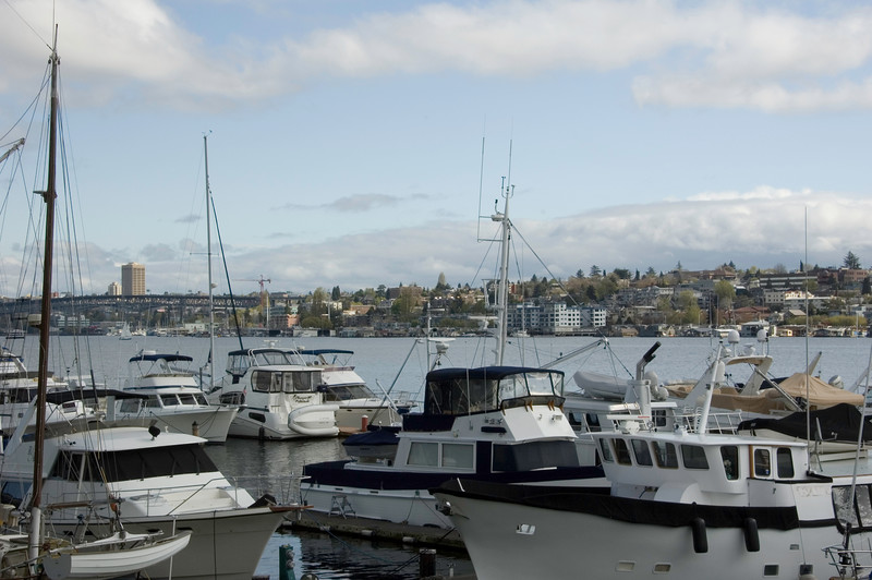 This view is from the Westlake district, looking east across Lake Union.
