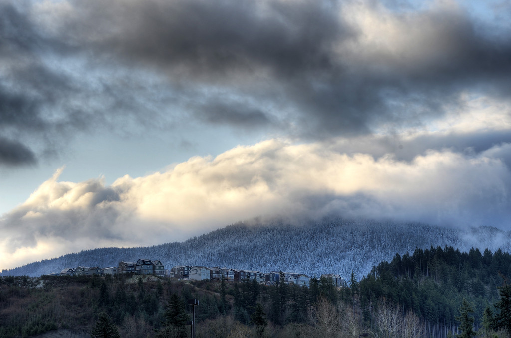 Fresh snowfall on Tiger Mountain, Issaquah