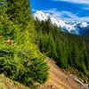 Mt Rainier and Danger