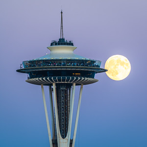 Needle and the Moon