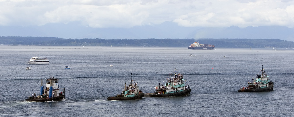 Tug Boat Races