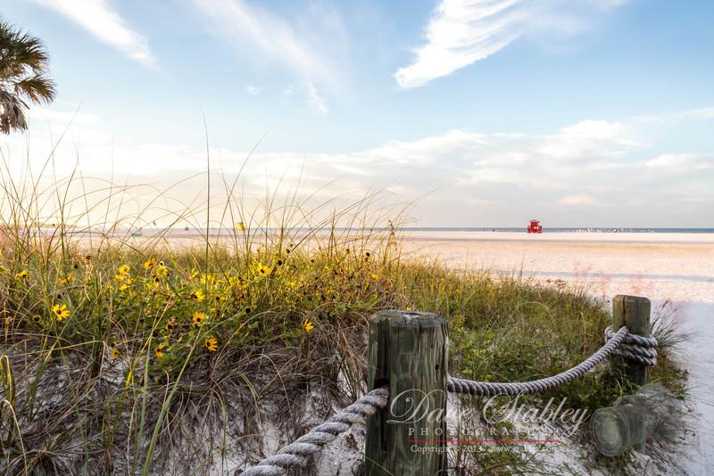 Siesta Beach Dawning