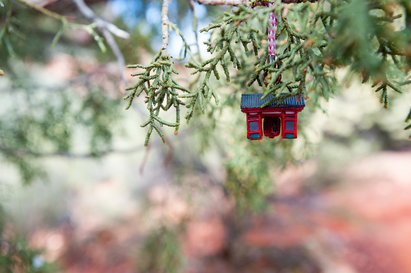We came across this odd little ornament on a tree during a hike.