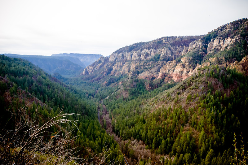 Overlooking Oak Creek Canyon after having driven up and out of it.