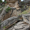 Looking up at the ledges that make up the rim of Montezuma Well.