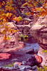 Oak Creek Canyon in Fall