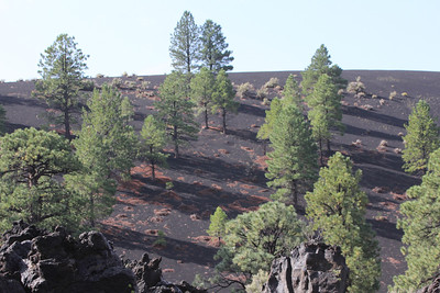 Sunset Crater is a volcanic cinder cone located north of Flagstaff in U.S. State of Arizona. The crater is within the Sunset Crater Volcano National Monument.  Sunset Crater is the youngest in a string of volcanoes (the San Francisco volcanic field) that is related to the nearby San Francisco Peaks.[3]