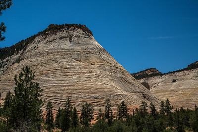 Checkerboard Butte in Zion.