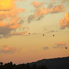 113- Hot air balloon at sunrise