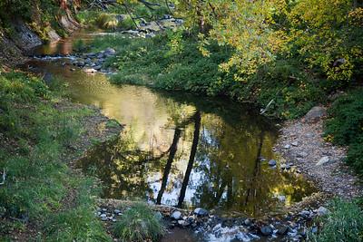 Fall colors on Oak Creek