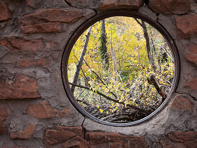 Window on the woods.