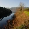 Mino River