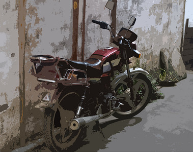 China bike-1