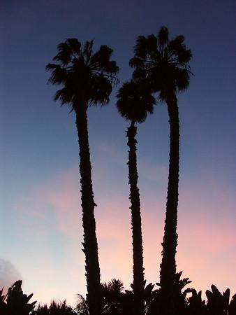 San Diego (Dec 2005)