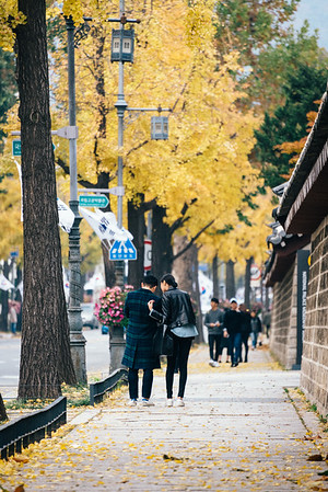 Seochon Autumn 2016