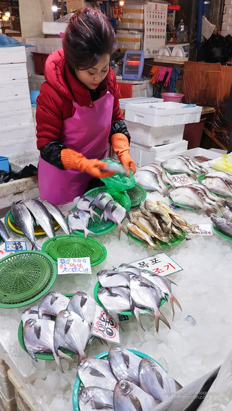 Picture of a lady selling fish at the market