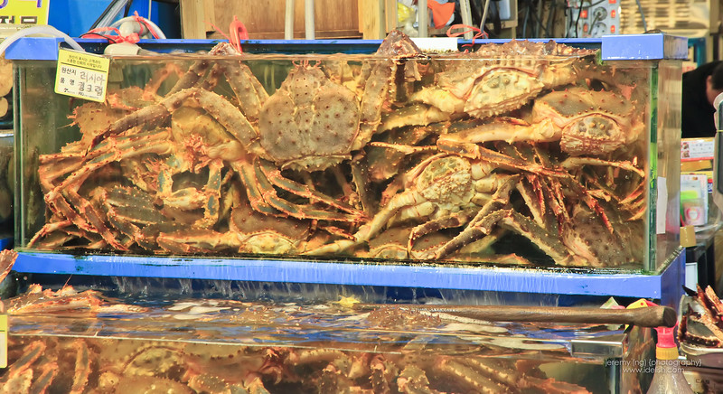 King Crabs at the Noryangjin Market