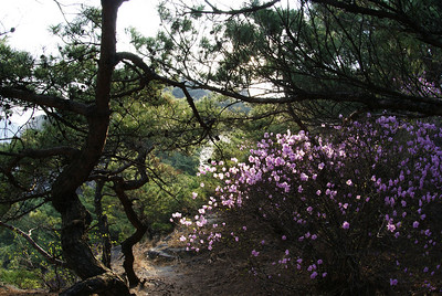 On the hike up Inwangsan.