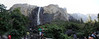 Bridalveil Falls and the south wall of Yosemite Valley.