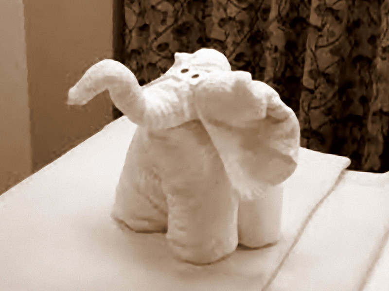 Towel animals.  Every evening our cabin steward created a different towel animal.