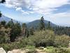 Redwood Canyon Overlook